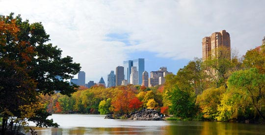 New York Fall Day