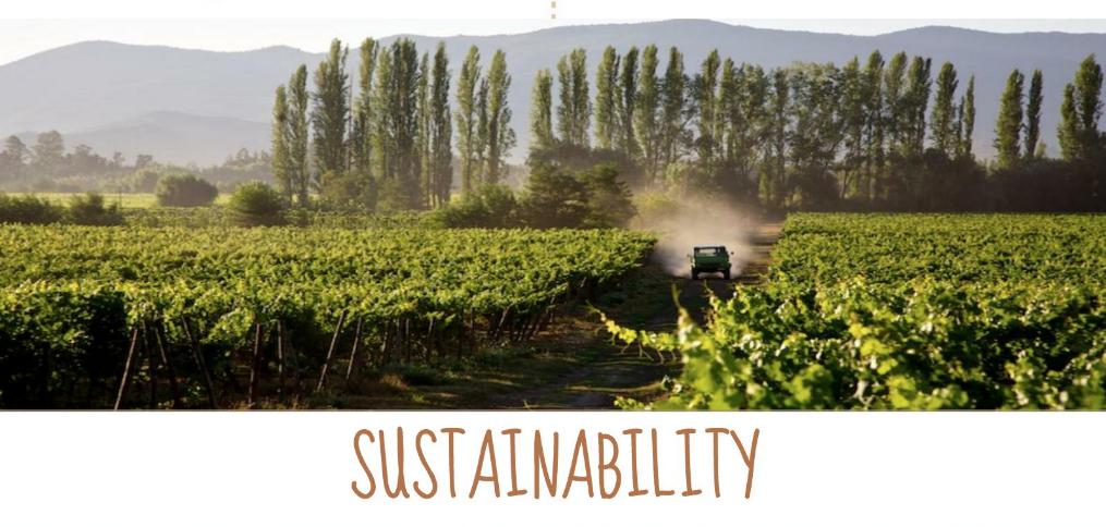 Organic Wines | Natura Wines