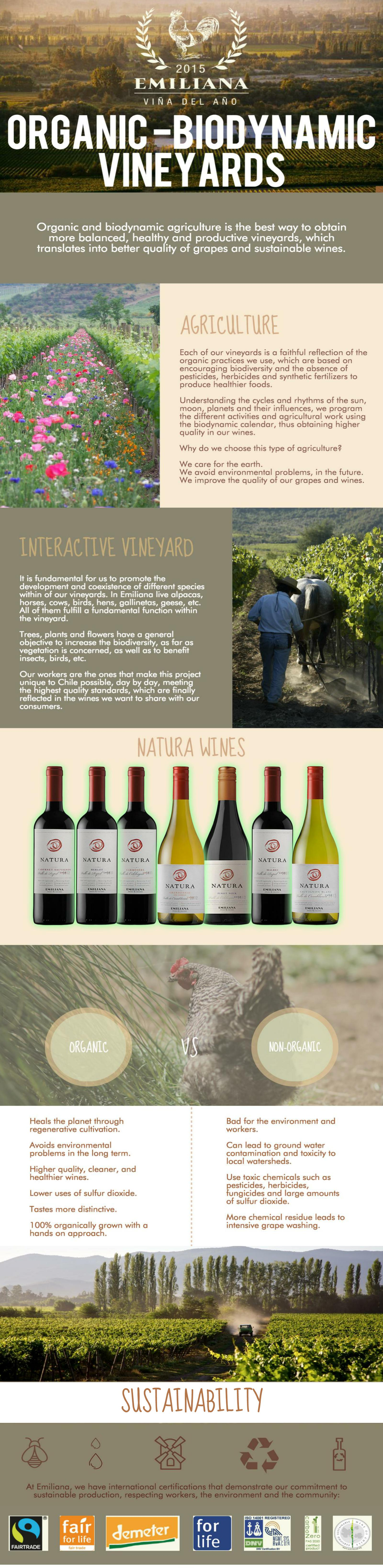 Sustainable Wines | Natura Wines