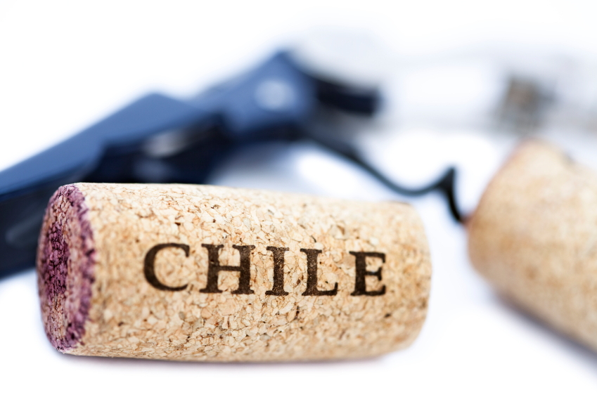 Chilean Wine | Natura Wines