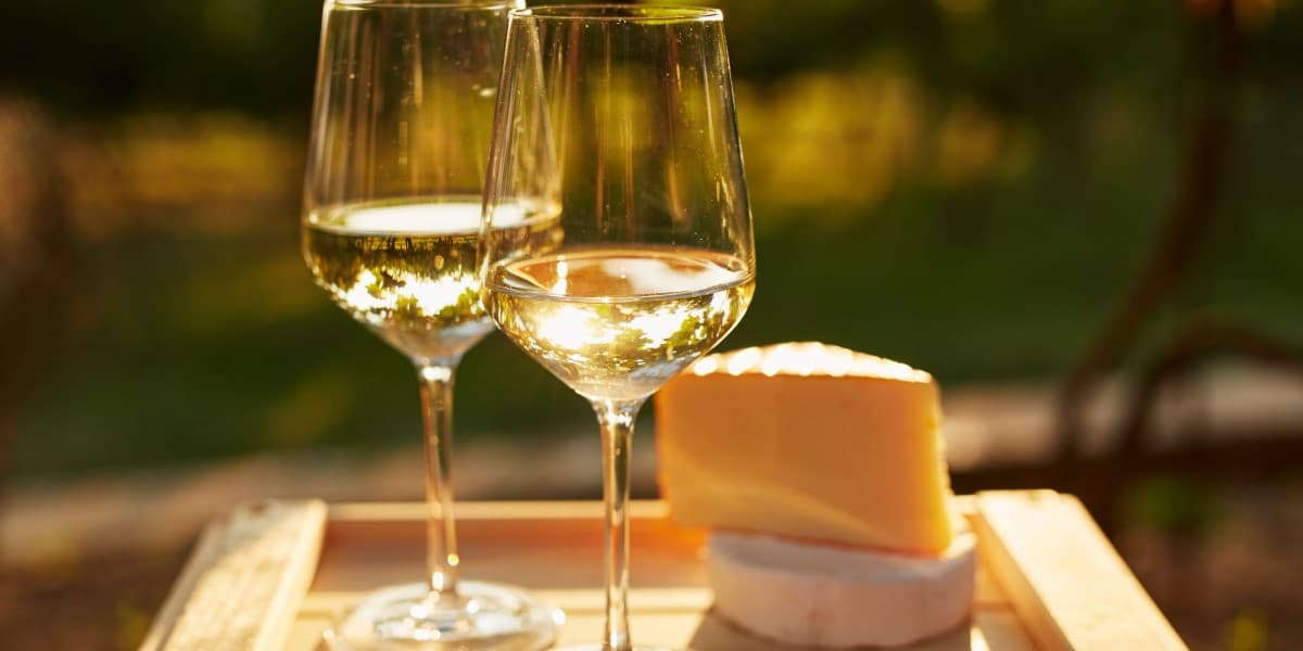 Unoaked Chardonnay | Crisp White Wine | Natura Wines of Chile