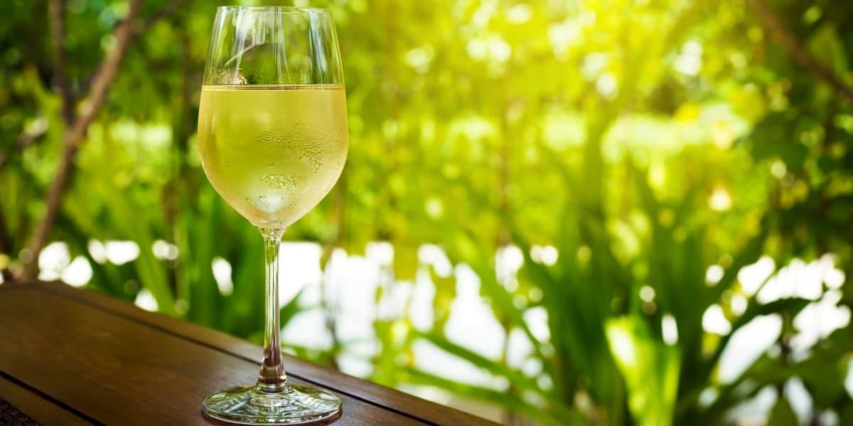 Sauvignon Blanc Brands | Dry White Wine | Natura Wines of Chile