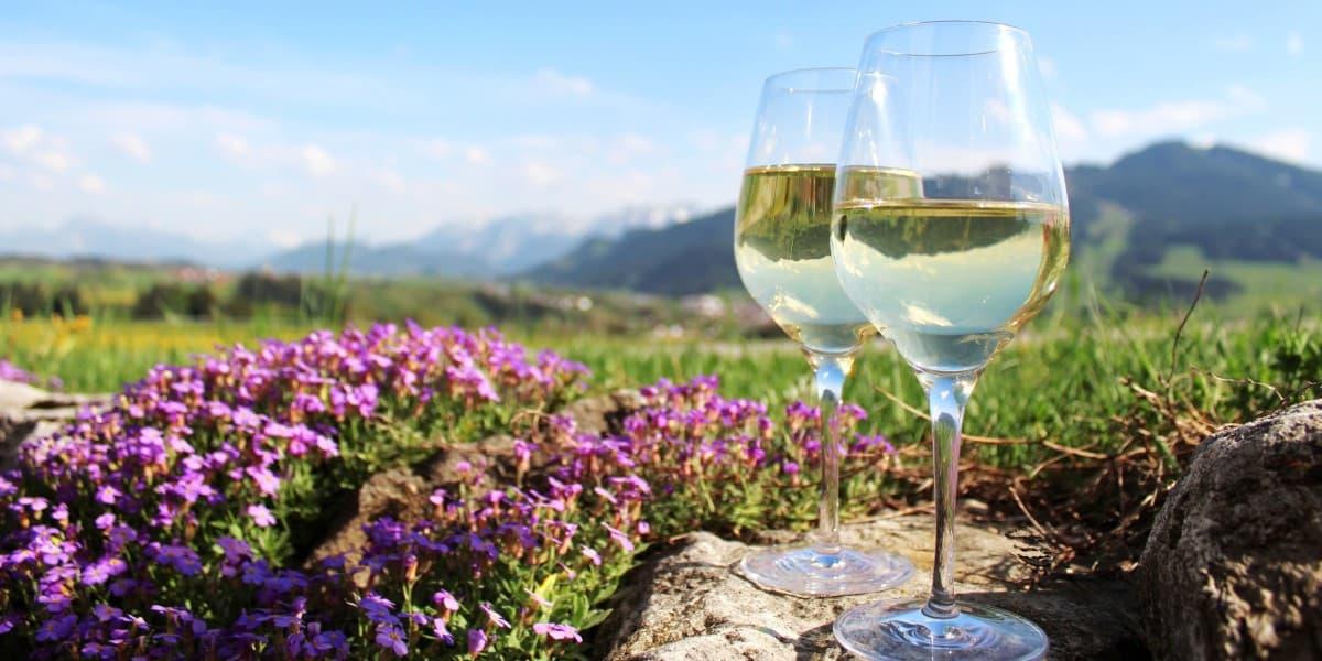 wines-of-chile-coastal-wines