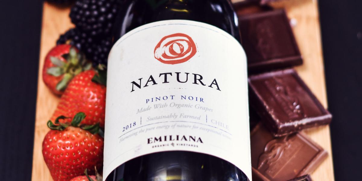 chocolate_and_wine_pairing_natura_pinot_noir