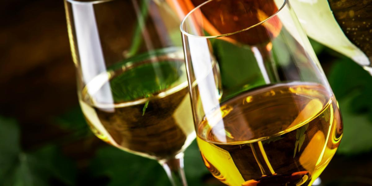 Vegan Wine | Organic Wine Brands | Natura