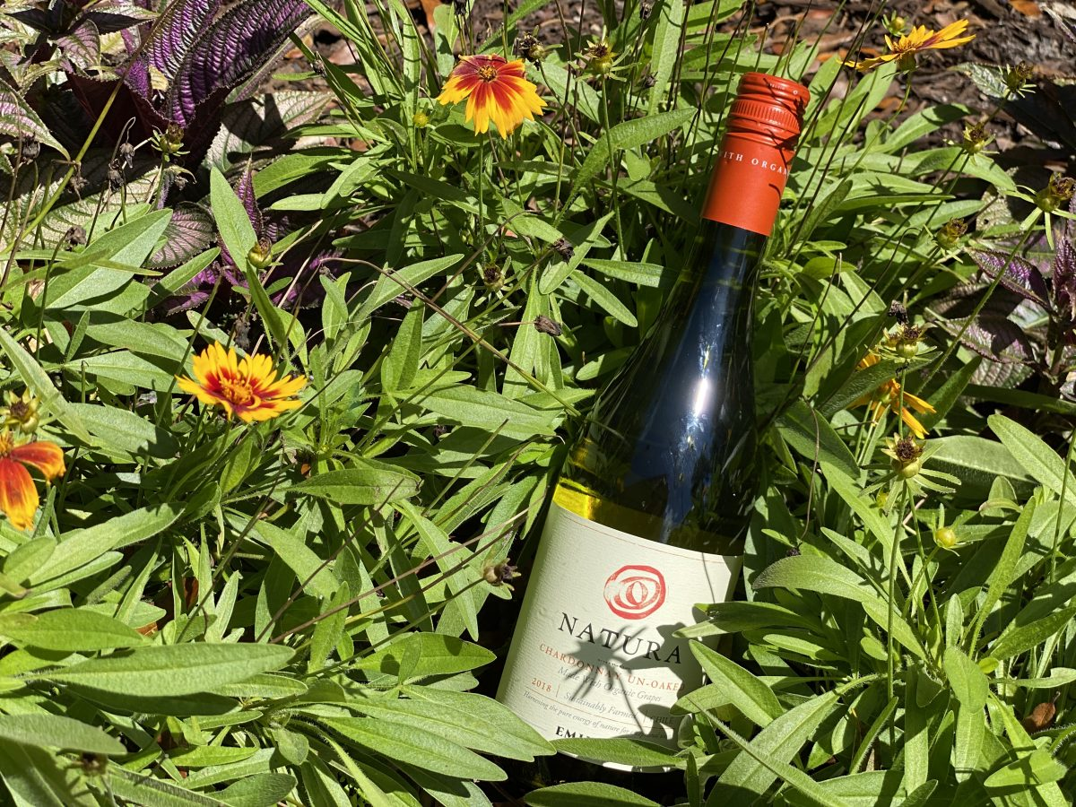 A bottle of one of Natura's organic wines laying in a patch of wildflowers