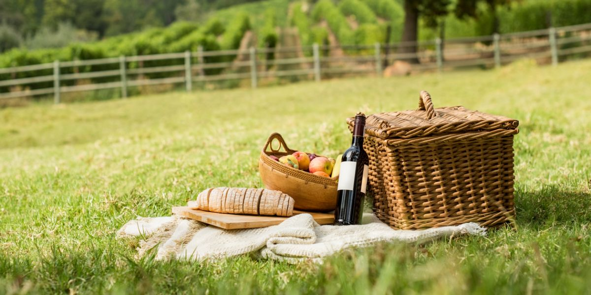 Picnic at park with wine